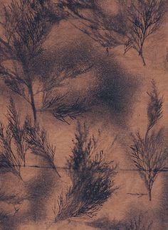 bleach dye diy, dye for darker fabric, tree, bleached fabric, bleach dyeing, natural dyes for fabric, fabric dye, dye fabric, dyeing fabric