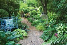Throughout the garden, secondary paths punctuated by informal seating create secluded spots perfect for a quiet chat, reading a book or just relaxing. The mix of furnishings and objets d'art serve as secondary focal points for plantings that include everything from houseplants, such as dumb cane (Dieffenbachia maculata), to tropical ferns and tricolor ginger (Stromanthe sanguinea 'Triostar').