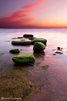 Simphony of color by Jorge Maia on 500px