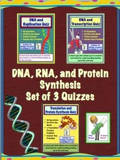 DNA (Deoxyribonucleic Acid), RNA, Protein Synthesis Quizzes - Set of Three