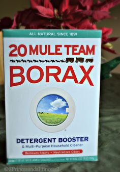 3 Princes And A Princess 2: Ways to Use Borax from the Kitchen to the Bedroom (Give Away)  20 Mule Team Borax