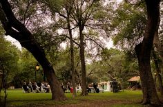 bdc125a56d78cc7ea711fbaeca796d29 San Antonio Wedding Photographers, Houston Wedding Photography