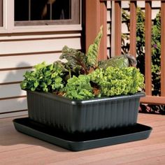 UrBin Grower with Veggie Tower - great for a patio or balcony garden. And, it's self watering so you won't over water your vegetables.