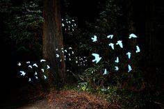 DIY: Make Crazy Detailed Light Paintings with Photo Light Stencils | Photojojo