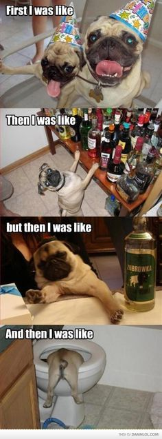 i've never actually done this, but the pugs are adorible!!