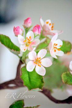 ER Flowers ArtStudio.