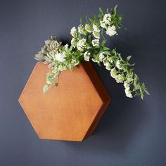 Vase and wall art in one. The removable metal insert in our Hex Wood Wall Vase makes it easy to switch in new flowers or water potted plants.