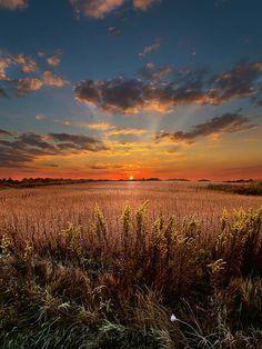 ✯ Risen - By Phil Koch - Milwaukee, Wisconsin