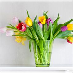 garden jardin, flower arrang, floral arrang, household, flower idea, spring tulip, tulips, homes, cut flowers