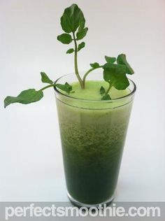 Green Tea Weight Loss Smoothie - PerfectSmoothie.com