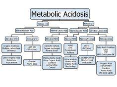 Metabolic Acidosis.