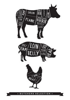 Butcher Print - Butcher Meat Diagram Print