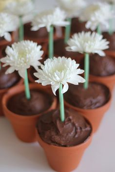 Chocolate flower cupcakes - I could do these!!!  SOOO adorable!!