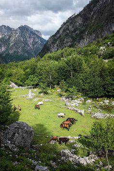 Valbona, Albania..