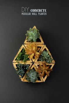 DIY: Concrete Modular Geometric Wall Planters. I really want to make this!