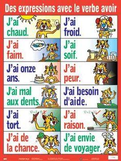 Des expressions avec le verbe AVOIR