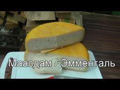 Не получился сыр в домашних условиях