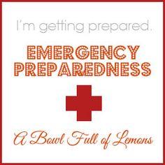 Emergency Preparedness - A Bowl Full of Lemons