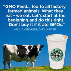 Are you drinking Starbucks? As the largest producer of GMO crops, Monsanto holds court with conventional dairy producers due to the fact that a factory-farmed cow's diet consists mostly of Monsanto's GMOs, including corn, cottonseed, soy and alfalfa. To learn more and take action, go here: http://gmoinside.org/starbucks Second step, post on the Starbucks' Facebook page: www.facebook.com/starbucks  Then call Starbucks at 1-800-782-7282 #GMODairy #WTStarbucks #StopMonsanto