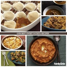 Our Favorite Sweet Potato Recipes #thanksgiving #sweetpotatoes #sides #holidays
