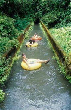 Tubing through Kauai's sugar cane plantation. Did this over summer with @Matt Johnston and @Dani Storti ...so fun!