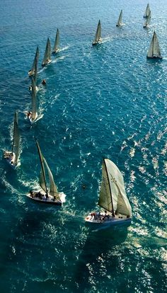 Summer boat races...