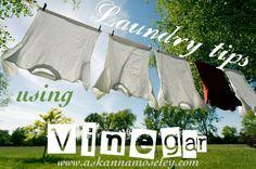 Vinegar Tips: Laundry, Day 1