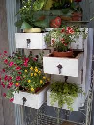 Old drawers as plant boxes