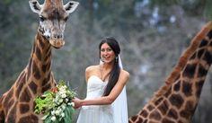 zoo wedding :)