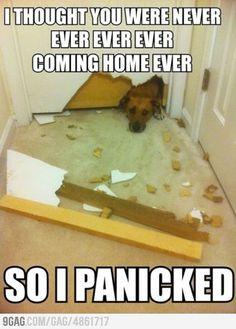 I panicked...