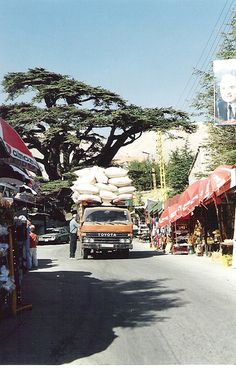 Lebanon, Cedars, via Flickr.