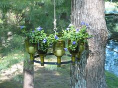 A handmade upside down wine bottle chandelier rack of recycled French wine bottles. This chandelier can Become a planter or an ornamental piece to suit any occasion or any season.