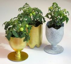 SODA BOTTLE CD'S PLANTERS! These would look better in primary colors, I think.