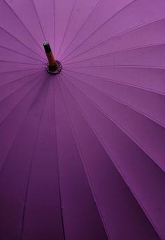 Purple unbrella