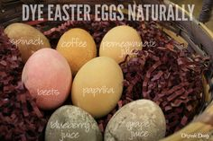 Dye Easter Eggs Naturally - Organic Deals & Coupons - Organic Coupons