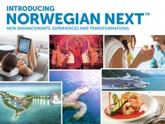 """We're investing more than $250 million in our exciting, new program, """"Norwegian NEXT."""" This robust program will include ship revitalizations, enhanced dining experiences—complete with new menus and handcrafted beverages, unique entertainment and guest activities, technological innovations, more tropical destinations and our continued commitment to the environment. http://www.premiercustomtravel.com/cruises/norwegian.html #Travel #Cruising #NCL #NorwegianNext"""