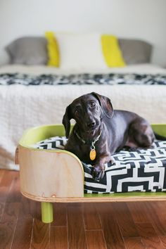 The Sadie bed (how to make a modern pet bed. click for more)