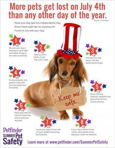 And, PLEASE leave your dog(s) at home when you go see the fireworks!! Fireworks are sheer torture for them, not pleasure.