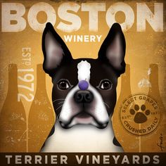 Boston Terrier Wine Company original illustration gallery wrap on canvas 12 x 12 by #stephen fowler etsy.com