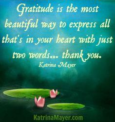 Gratitude quote via www.KatrinaMayer.com