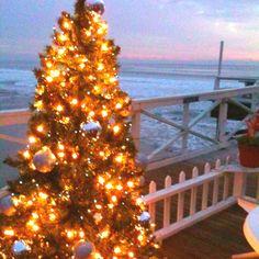 San Diego Christmas---YES!!!!