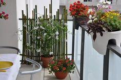 verdure balcon on pinterest 33 pins. Black Bedroom Furniture Sets. Home Design Ideas