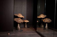 interior design, front rooms, art photography, martin margiela, paris hotels, garden, champs, bedroom, mushrooms