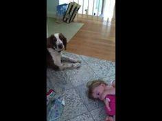 Dog fixes temper tantrum