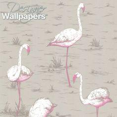 Flamingos - beautiful wallpaper