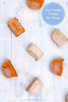 We Know Stuff   Ice Cream Treats for Dogs   www.weknowstuff.us.com