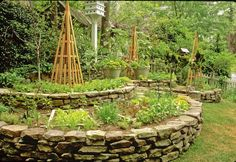 Different approach to raised vegetable plot.