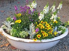 How to plant a container garden-  Advice on plant combinations, feeding, drainage  container choices.  Plant a little garden today!  www.mysoulfulhome.com
