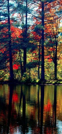Fall reflections in the Adirondacks of New York • photo: Emily Stauring on FineArtAmerica