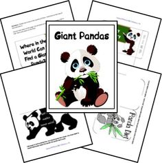 free panda, homeschool, giant pandas, scienc